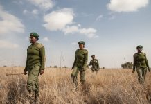 Meet Team Lioness: Female Rangers Stopping Poachers in Kenya
