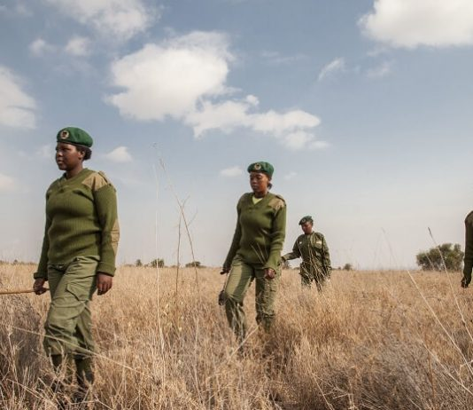 Meet Team Lioness: Female Rangers Stopping Poachers in Kenya