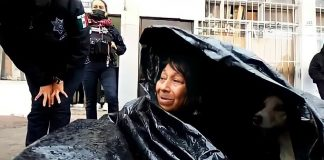 A Homeless Woman Sleeps In a Garbage Bag with Her Dogs