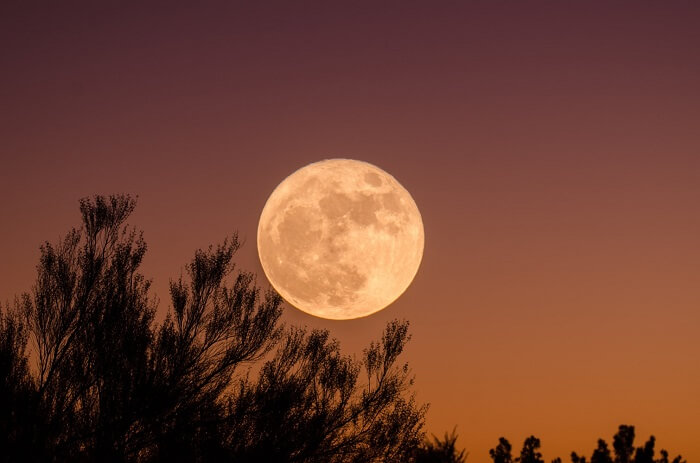 13 Full moons in a year